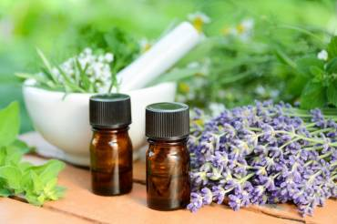 Lavender History and Benefits